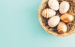 Picture background, eggs, Easter, happy, basket, eggs, easter, decoration, basket