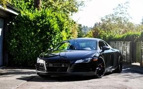 Picture Audi, Car, R8