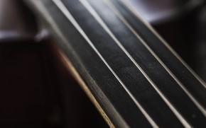 Picture macro, strings, tool