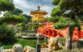 Picture trees, nature, pond, stones, Hong Kong, China, pagoda, the bridge, pavilion, Park-garden, Nan Lian