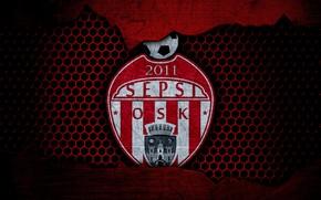 Picture wallpaper, sport, logo, football, Sepsi OSK