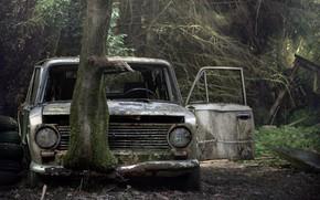 Picture machine, tree, scrap