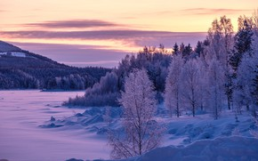 Picture winter, frost, forest, clouds, snow, trees, sunset, lake, pond, lilac, hills, shore, winter, beauty, tale, …