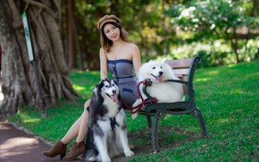 Picture dogs, girl, Asian, bench