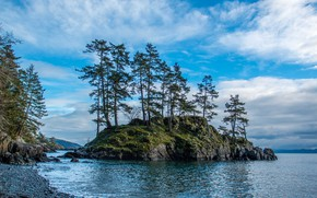 Picture trees, nature, island, beauty