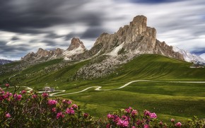 Picture summer, flowers, mountains, Alps, The Dolomites