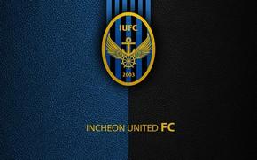 Picture wallpaper, sport, logo, football, Incheon United