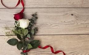 Picture love, roses, love, romantic, roses