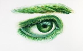 Picture Figure, Look, Eyes, Green, White background, Eyelashes, The pupil, Art, Eye, Бровь