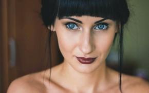 Picture green eyes, eyes, model, pretty, face, brunette, beautiful girl, portrait