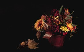 Picture autumn, leaves, bouquet, still life