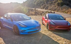 Picture USA, USA, Tesla, Tesla, Tesla Model 3