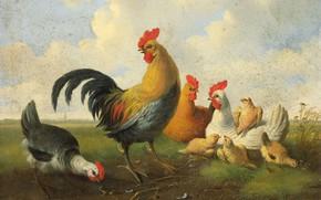 Picture birds, oil, picture, canvas, 1855, Петух с Курицамими и Цыплятами, Albertus Verhoesen