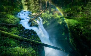 Picture forest, river, waterfall, logs, Olympic National Park, Sol Duc Falls, Sol Duc River, Olympic national …