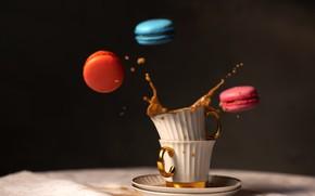 Picture macaron, splash, cookies, coffee