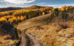 Picture road, autumn, forest, mountains, the way