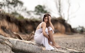 Picture girl, pose, tree, dress, brown hair, bokeh