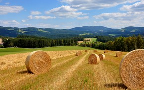 Picture field, forest, grass, clouds, mountains, nature, hills, dal, cleaning, hay, bales, straw, the end of …