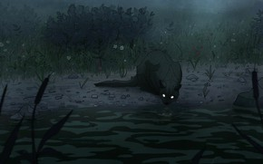 Picture predator, reed, wild cat, burning eyes, black cat, in the dark, black cat, the fog …