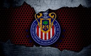 Picture wallpaper, sport, logo, football, Guadalajara Chivas
