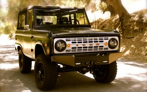 Picture Ford, SUV, 2012, Bronco, ICON BR