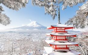 Picture winter, snow, trees, branches, mountain, the volcano, Japan, Fuji, pagoda, Japan, Mount Fuji, Fuji, Chureito …