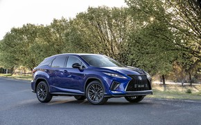 Picture Lexus, 2019, RX 300 F