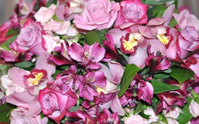 Picture flowers, bouquet, in pink