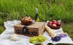 Picture nature, wine, basket, apples, glasses, grapes, fruit, picnic, baguette, wine, romantic, fruits, croissants, picnick