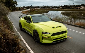 Picture Mustang, Ford, tuning, 2019, Revenge GT