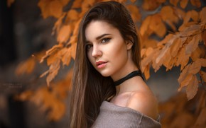 Picture autumn, look, leaves, branches, nature, model, portrait, makeup, hairstyle, brown hair, bokeh, Robert Chrenka, Barča