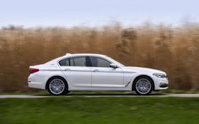 Picture white, lawn, BMW, profile, sedan, hybrid, 5, four-door, 2017, 5-series, G30, 530e iPerformance