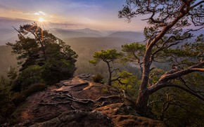 Wallpaper summer, the sky, the sun, rays, light, trees, mountains, branches, nature, roots, fog, stones, rocks, ...