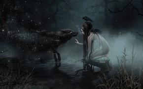 Picture swamp, wolf, witch, werewolf, undead, wolf, witch, dark forest, black magic, the fog at night, …