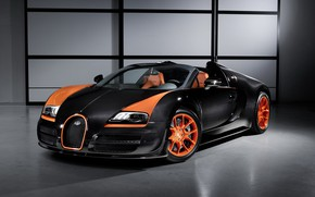 """Picture Roadster, Veyron, Grand Sport, 2013, """"Speed"""""""
