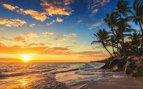 Picture sea, beach, the sun, palm trees, the evening