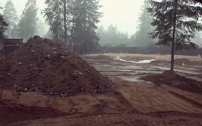 Picture Construction, Rain, Dirt, Tree