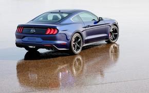 Picture Mustang, Ford, rear view, 2018, Bullitt, Kona Blue