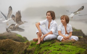 Picture birds, nature, children, fog, stones, seagulls, moss, boys, Irina Nedyalkova