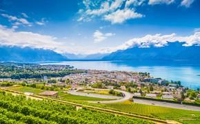 Picture mountains, lake, Switzerland, the vineyards, Vevey