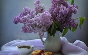 Picture branches, tea, Cup, fabric, pitcher, still life, saucer, cakes, lilac, Kovaleva Svetlana, Svetlana Kovaleva