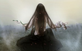 Picture snakes, girl, hair, photoshop, photoart