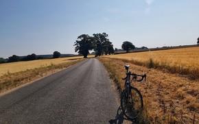 Picture road, field, summer, bike, halt, road Builder