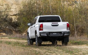 Picture road, greens, white, grass, Toyota, pickup, Hilux, Special Edition, 2019