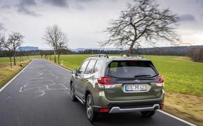 Picture road, Subaru, crossover, Forester, 2019