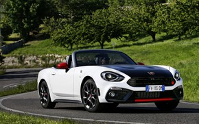 Picture asphalt, plants, Roadster, spider, black and white, double, Abarth, 2016, 124 Spider