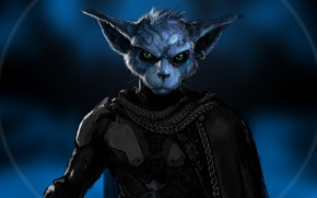 Picture look, face, armor, ears, earring, mutant