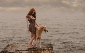 Picture water, dog, redhead
