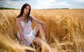 Picture summer, girl, dress, ears, legs, Alexander Parkhomenko