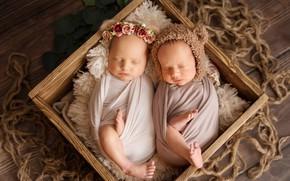 Picture box, sleep, kids, wreath, cap, babies
